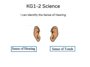 KG-1-2 Science 02/05/2021 by Vantage KG