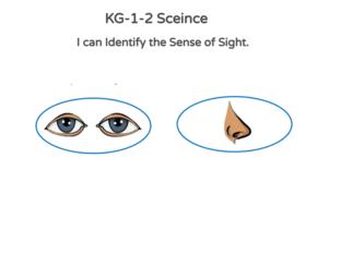 KG-1-2 Science 03/05/2021 by Vantage KG