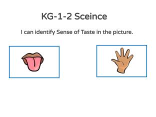 KG-1-2 Science 04/05/2021 by Vantage KG