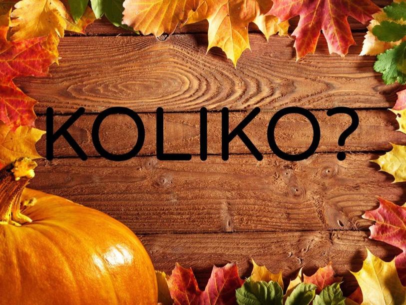 KOLIKO? by Tanja Metez Omerzel
