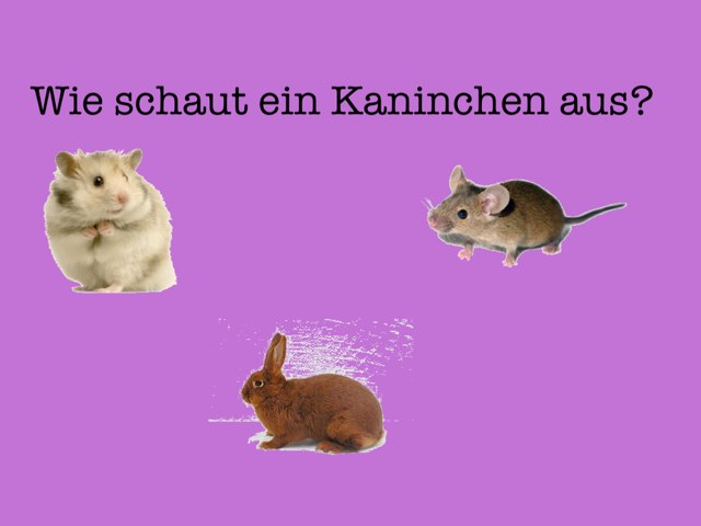 Kaninchen Spiel 2 by Schüler GESS