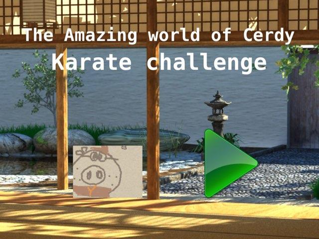 Karate Challenge  by Andrés Badillo