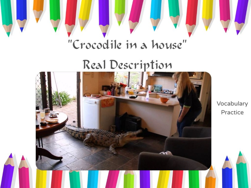Key vocabulary from Crocodile in the House by Andres Hunter