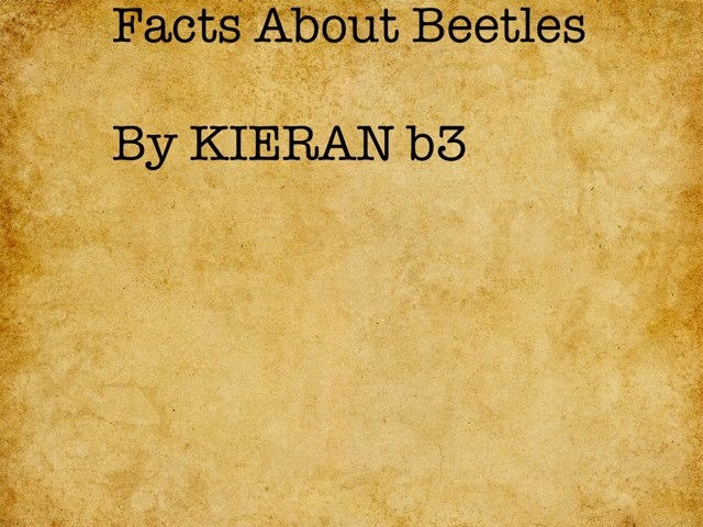 Kieran's Beetle Project by Vv Henneberg