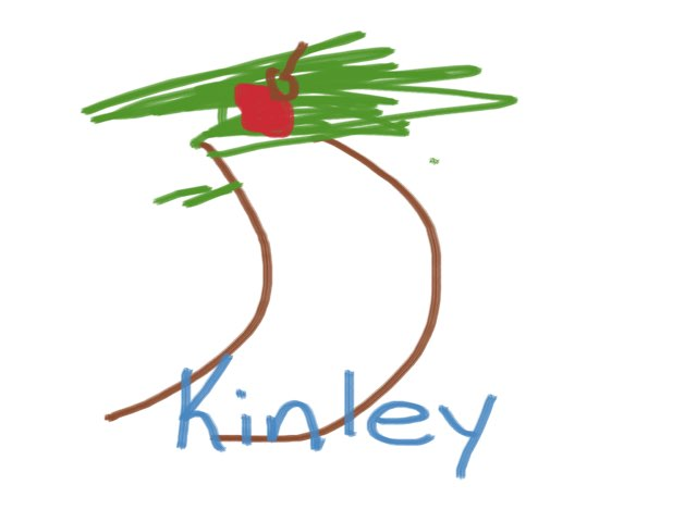 Kinsey by Boone Central Primary Cart