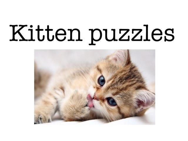 Kitten Puzzles by Piper Kolafa