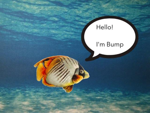 Know The Bump's Emotions by Sara Burgueño Peña