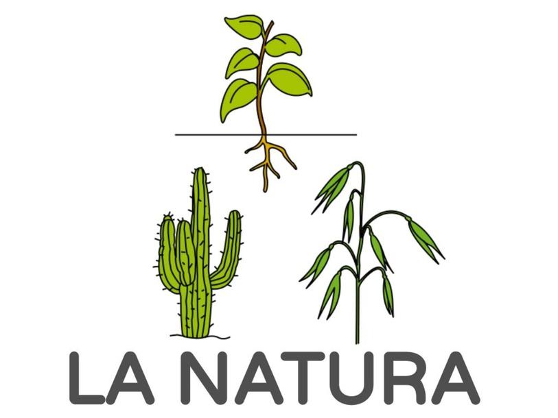 LA NATURA by Ariadna Solsona