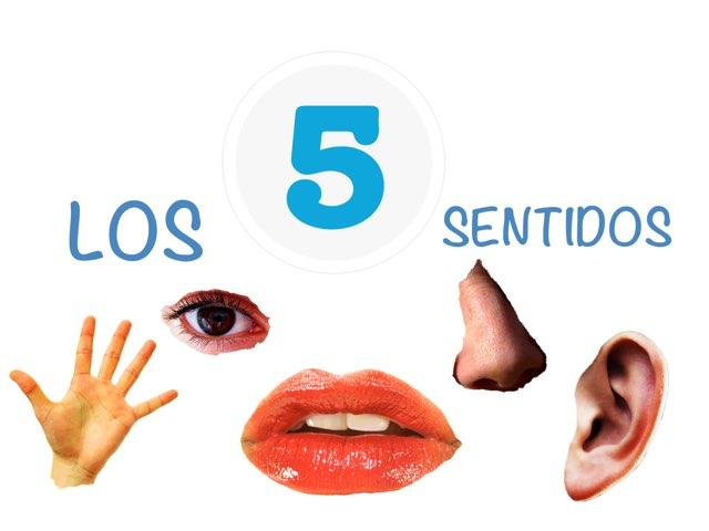 LOS 5 SENTIDOS  by Quiero Compartir