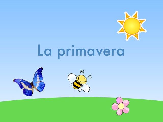 La Primavera by Marta villa