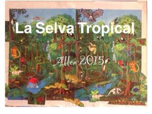 La Selva Tropical - Allen by Caitlin  Smith