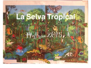 La Selva Tropical - Hoffman 2015 by Caitlin  Smith