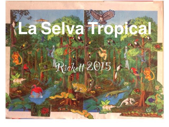 La Selva Tropical - Rickett 2015 by Caitlin  Smith