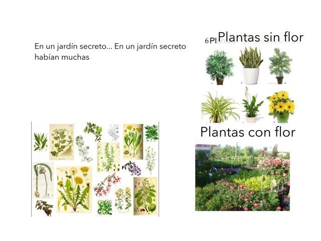 Las Plantas by Curso CFTIC