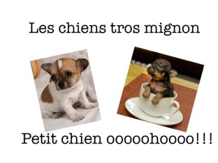 Le Chien  by Mafalda Goncalves