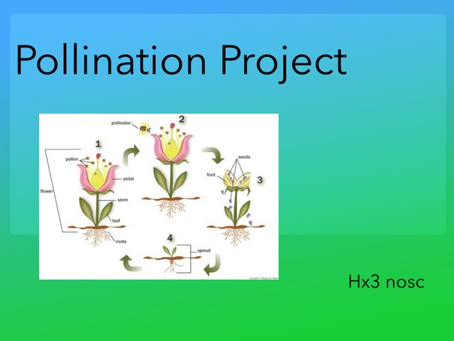 Learn Pollination  by hx3 nosc