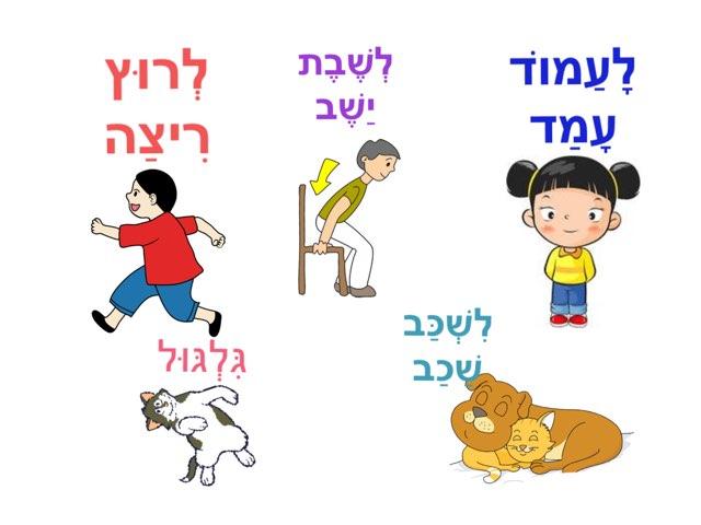 Learn Verbs In Hebrew by Morah Wilma