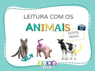 Leia o nome dos animais by Ana Carolina Povoa