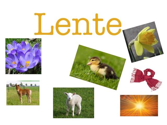 Lente Spel by Senne Pannevis