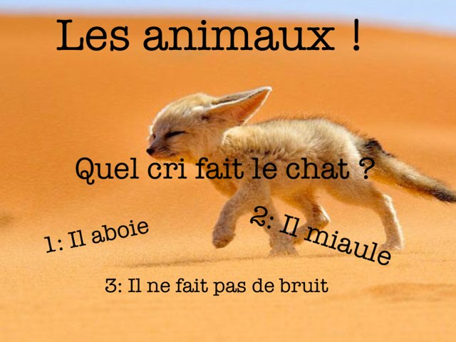 Les Animaux ! by Berenice Degond