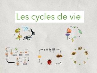 Les Cycles De Vie by Jean Moulin