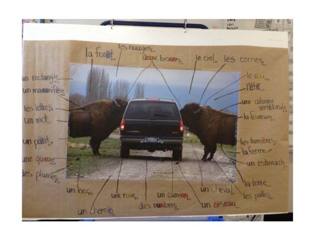 Les Deux Bisons Puzzle by Elise Lavoie