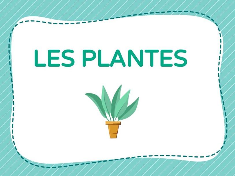 Les plantes by Anna Prat