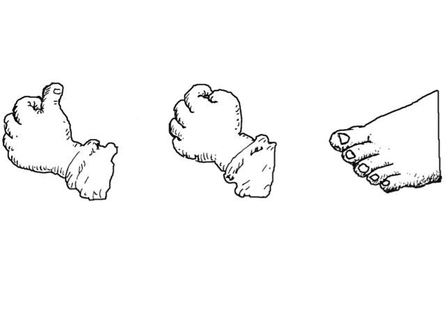 Lichaamsdelen en houdingen  by Esther Dubbeldam