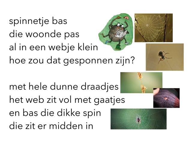 Lied Spinnetje Bas by Miranda Dijkstra