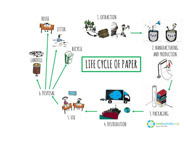 Life Cycle of Paper by Cool Australia