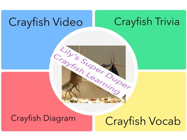 Lily's Super Duper Crayfish Learning! by Chris  Smith