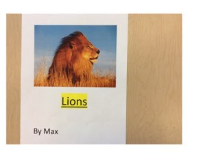 Lions  by Max by Yvonne Malone