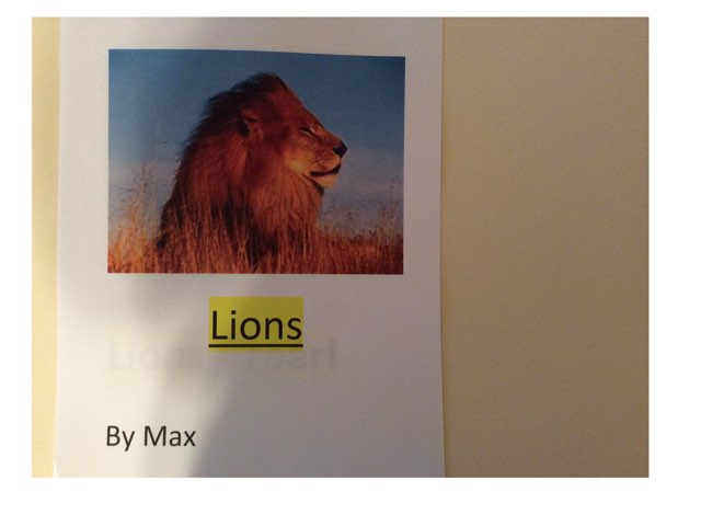 Lions  by Yvonne Malone