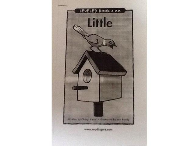 Little by Heather Higgins