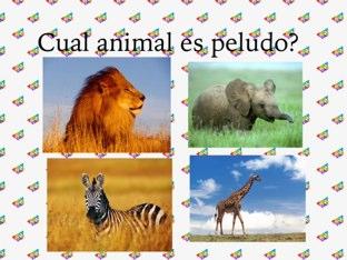 Los Animales Del Zoologico by Sonia Almares