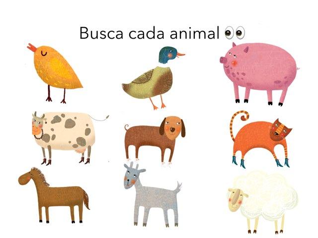 Los Animales  by Isa Maya Trenado