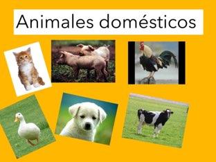 Los Animales by Maria Jose Cuenca