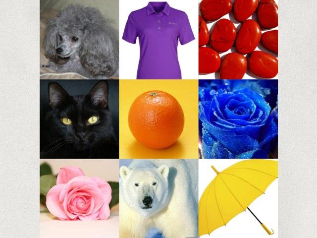 Los Colores 2 by Muni Luetkenhaus