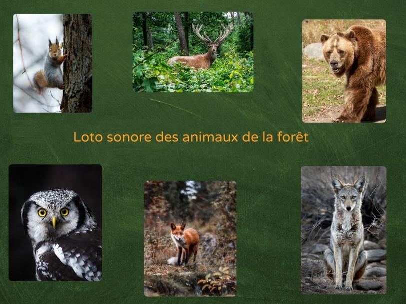 Loto sonore des animaux de la forêt by Stéphanie Barbot