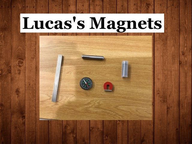 Lucas's Magnets by Frances Chapin