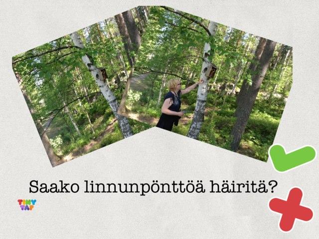 Luontovisa by Riitta Herranen