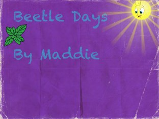 Maddie's Beetle Project by Vv Henneberg