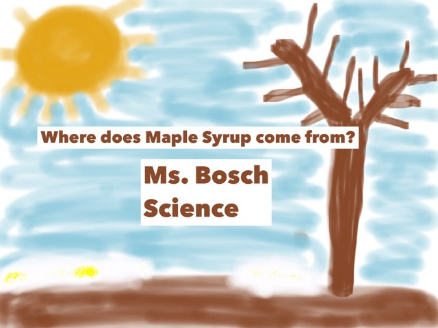 Maple Syrup by Sarah Bosch