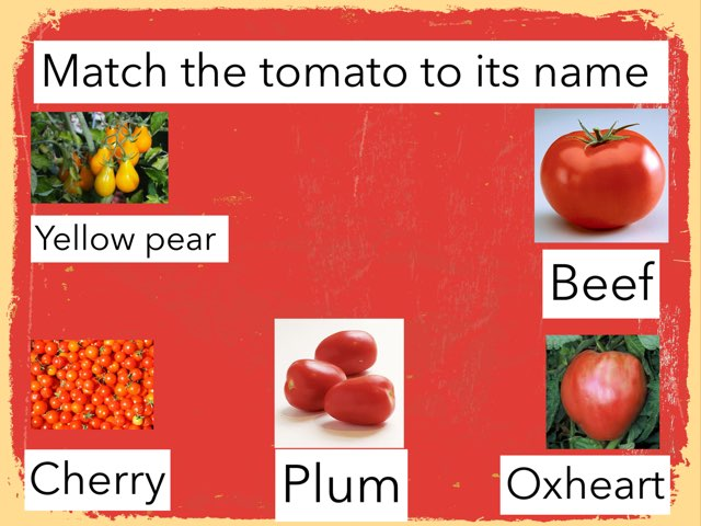 Match The Tomato To Its Name  by Lianne Lax