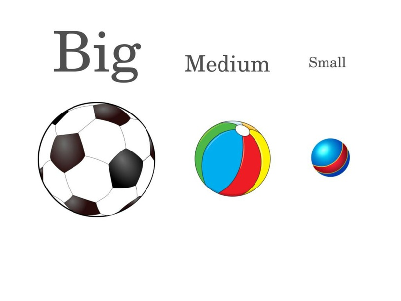 Match the Sizes: Big, Medium, Small by Emily Fam