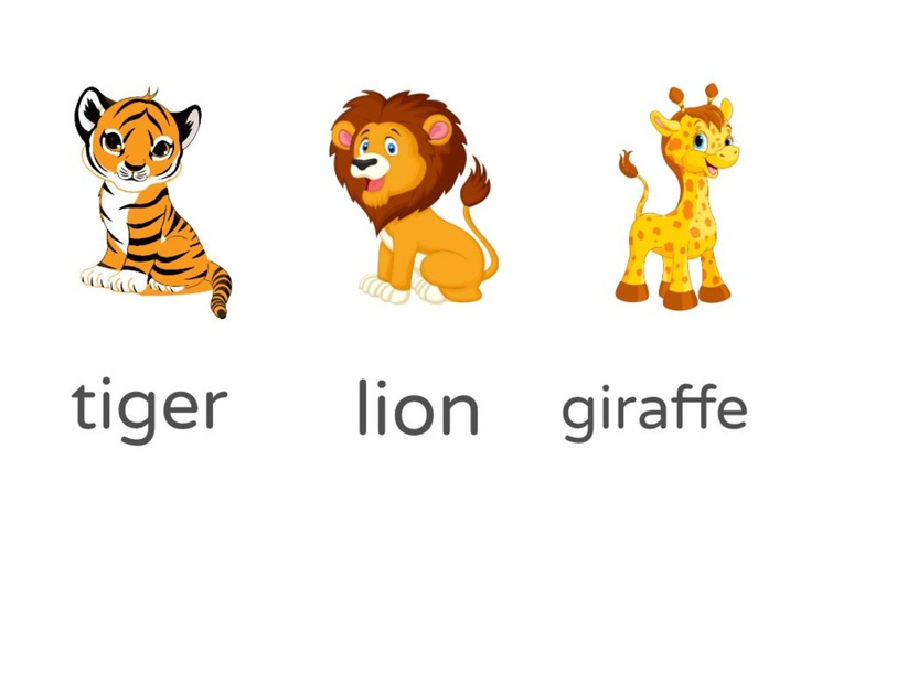Match the animals with their name by Yahya Ryza