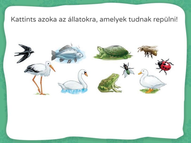 Melyik állat by Ambrusz Linda