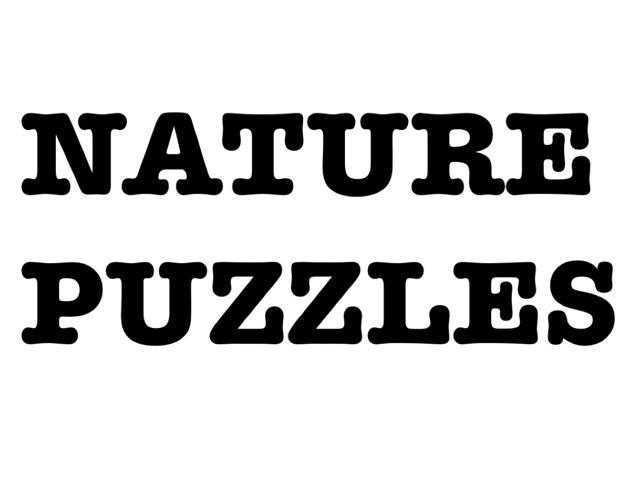 Miau-Nature Puzzles by Camila Villaveces