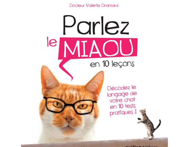 Miaule  by Marie Delemer