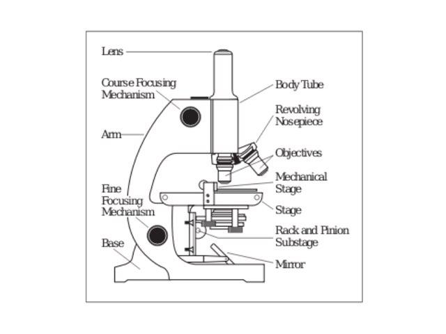 Microscope Demo by Timothy Teelin